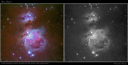 Orion Nebula Q65