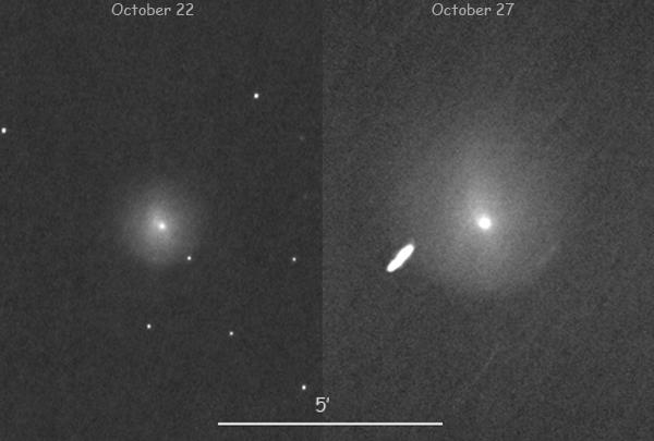 Comet X1 evolution