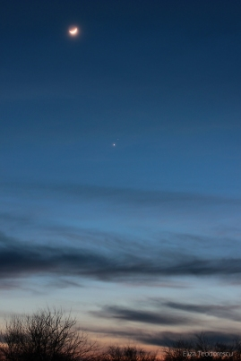 Venus and Mars 50mm