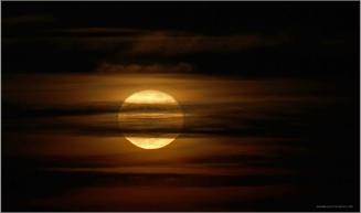 Moonrise3.jpg