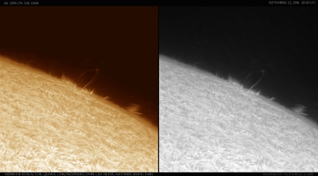 ar 2595 on the limb two.jpg