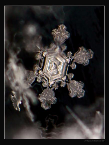 ICESTAR2.jpg