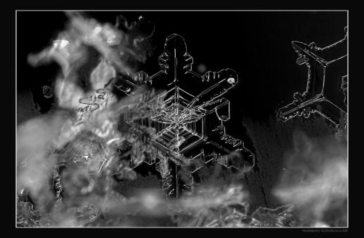 ICESTAR3.jpg