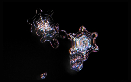 ICESTAR8.jpg
