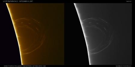 loop prominence sept 11.jpg