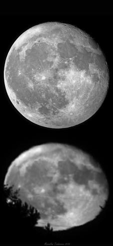 MoonSize2.jpg