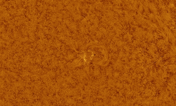 sunspot.jpg