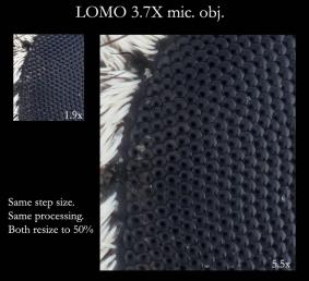 Detail comp.jpg