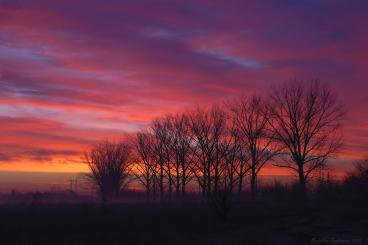 Morning colors1.jpg