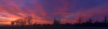 Morning colors2.jpg