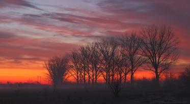 Morning colors3.jpg